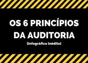 os 6 princípios da auditoria